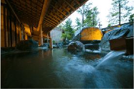 飛騨高山温泉ホテル-44